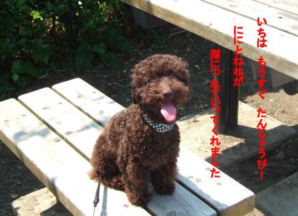 2006_0601山中湖0015A.jpg