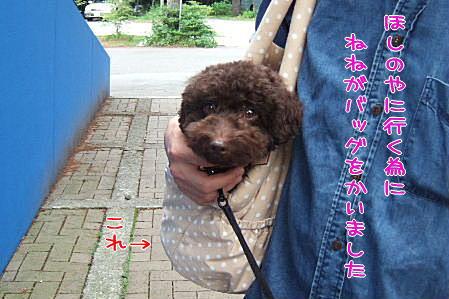 2007_0726hoshinoya0104a.JPG