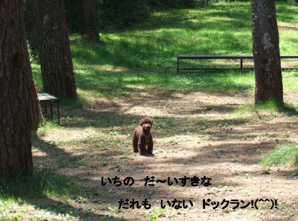 2006_0601山中湖0021A.jpg
