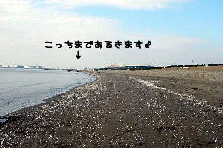 2006_12240020a コピー.JPG