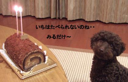 2006_0607お誕生日0028A.jpg