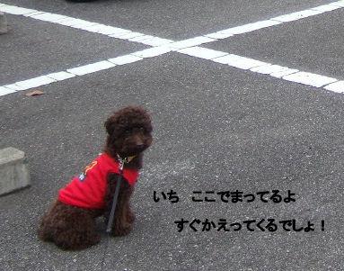 2006_0514母の日0032 (2).JPG
