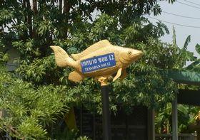 魚のかたちをしたソイの標識