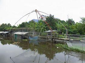 キンケーオ運河の魚を獲る仕掛け