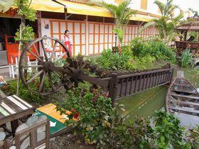 「100年前の舟」と灌漑用の木製機械