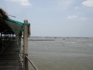 南棟から見たバンコク海