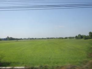 車窓に広がる田野の風景