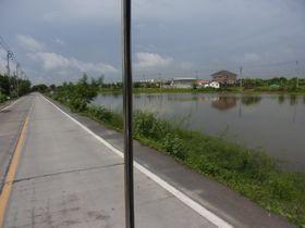 池が広がる風景