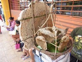 バーンブアトーン市場のハチの巣売り