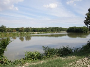 こんな池がたくさん…