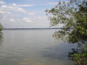 チャオプラヤー川河口の対岸を望む