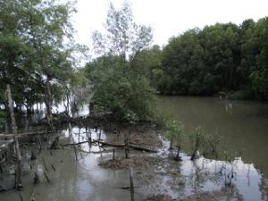 チャオプラヤー川河口の先端があそこに!