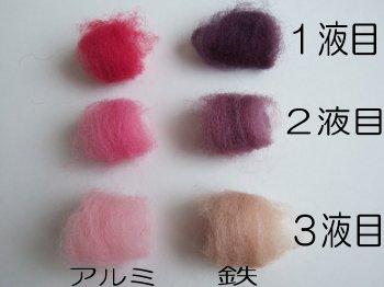 コチニール染め... | 「猫の手が作ったもの」は引越しましたhttp://kyoumitsuha.blog.fc2.com/ - 楽天ブログ