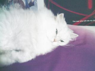 フィーナさん 2007-02-24-02