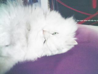 フィーナさん 2007-02-24-03