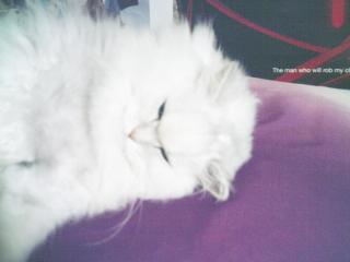 フィーナさん 2007-02-24-04