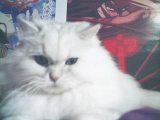 フィーナさん 2007-02-19-15