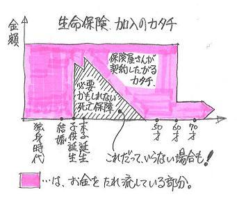生命保険 加入のカタチ.JPG