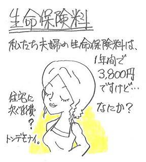 生命保険料 3,800円.JPG
