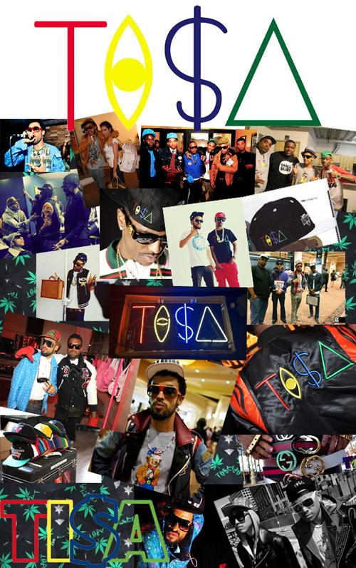 tisa2011logo-500.jpg