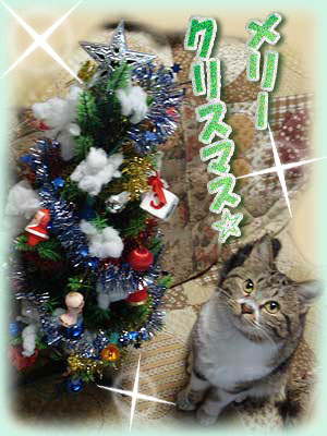 ひめツリー2