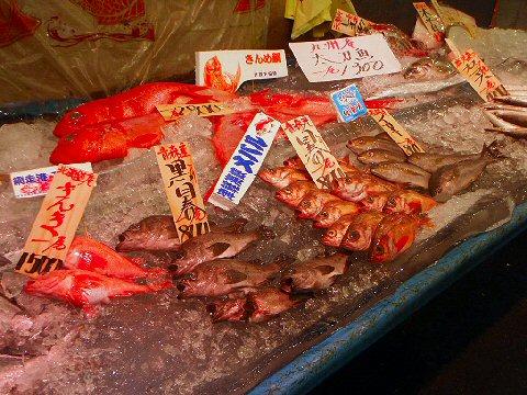 漁港に寄れば新鮮な魚も手に入ります♪