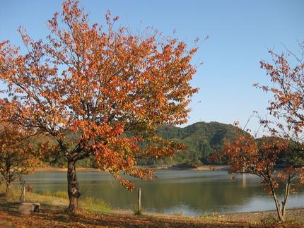 大池いこいの森