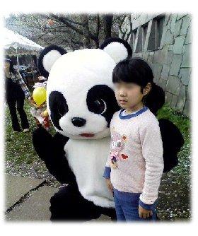 パンダと撮影