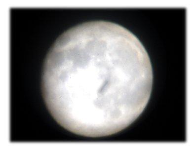月見10083