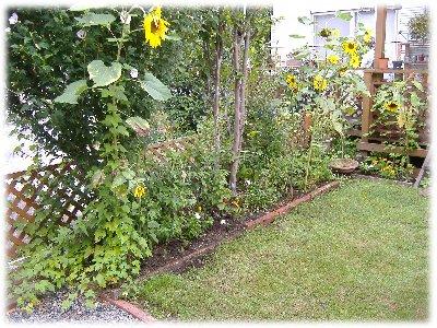 garden0812