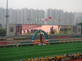 香港研修旅行 2010年12月 競馬開始1.JPG