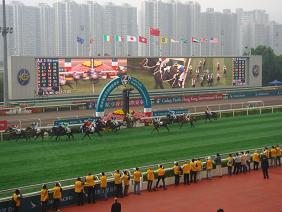 香港研修旅行 2010年12月 競馬FINISH.JPG
