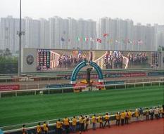 香港研修旅行 2010年12月 競馬場中央.JPG