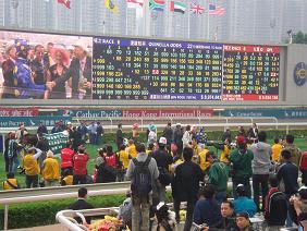 香港研修旅行 2010年12月 オッズをみる.JPG