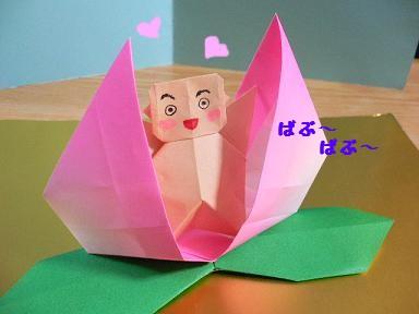 簡単 折り紙 折り紙 桃 : plaza.rakuten.co.jp