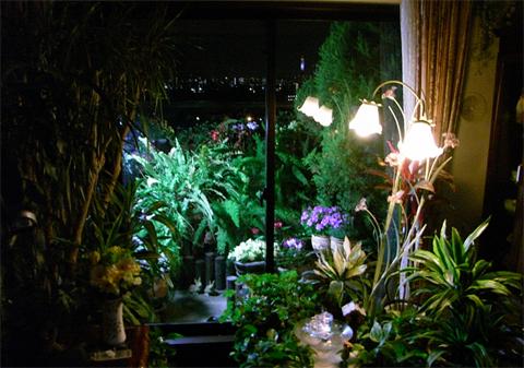 我が家の夜景(新2).jpg