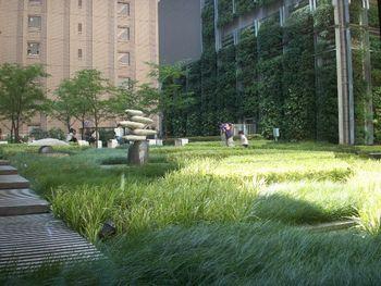 丸の内ホテル 空中庭園.jpg