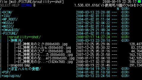 PSP Filer 5.8