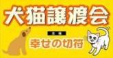 幸せの切符.jpg