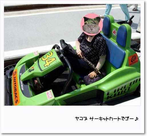 [photo08003593]DSC03186.jpg