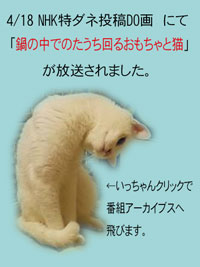 20100420001.jpg