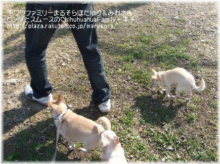 ノーリードほっちゃんと歩き組(スムーチー軍団)