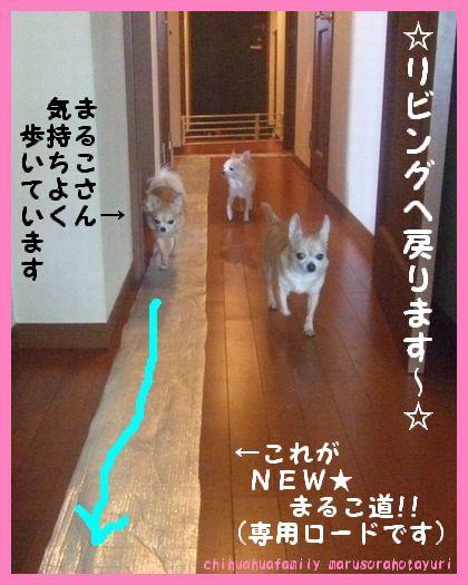 NEW★まるこ道 リビングへ・・・