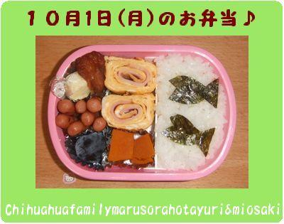 10月1日(月)のお弁当~♪