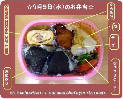 幼稚園のお弁当 9月5日(水)