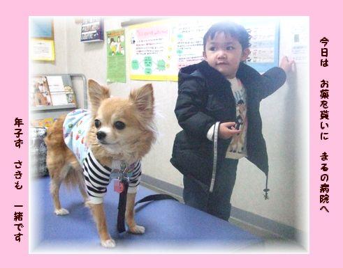 今日はまるの動物病院へさきも一緒です