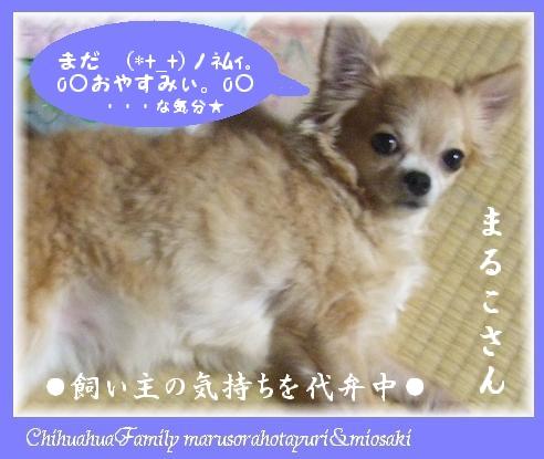 (*+_+)ノネムィ。o○おやすみぃ。o○