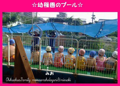 幼稚園のプール(組み立て式です)
