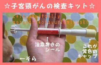 子宮頸がん検査キット