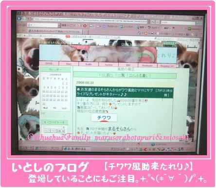 いとしのブログ(登場してるし。+.゚ヽ(*´∀`)ノ゚.+。 )